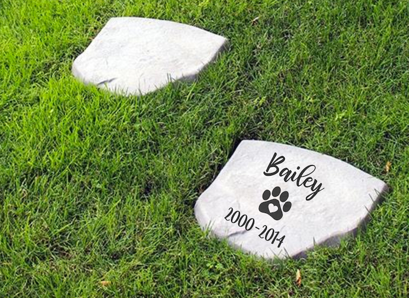 DIY Pet Memorial Stepping Stone: Cricut Projects Every Dog Lover Will Want